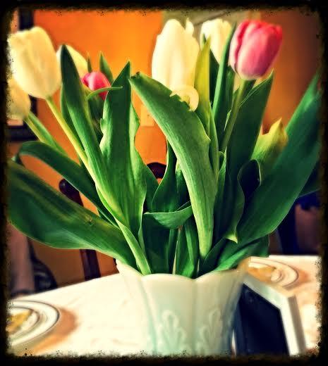 tulip w frame